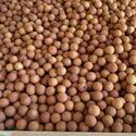 Sakthi Seeds Sandal Seeds - Santalum Album, For Wood