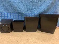 square nursery pots