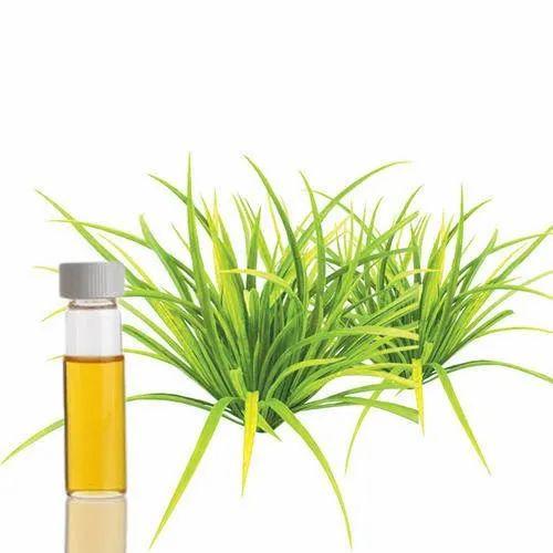 Cymbopogon Winterianus Jowitt Leaves Citronella Java Essential Oil