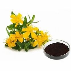 St. John's Wort Plant Extracts
