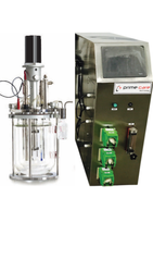 Lab Scale Bioreactor Fermenter