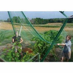 Bird Aviary Net