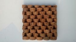 Cork Wall Covering Shell Cork