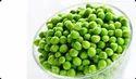 Vatana Green
