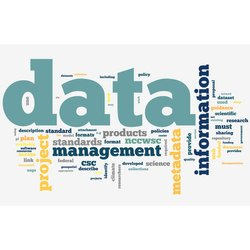 Online Data Entry Data Management Outsourcing Services
