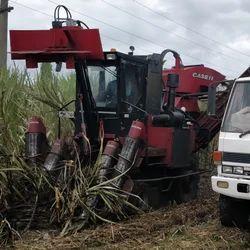 Case ih Sugarcane Harvester (Austoft)