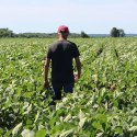 Career Guidance - Farmer
