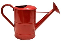 Color Finish Watering Can
