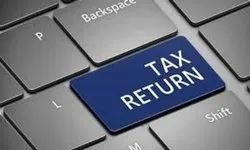 INCOME TAX RETURN FILLING, Company