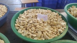 Large White Pieces/ K Cashew Nut