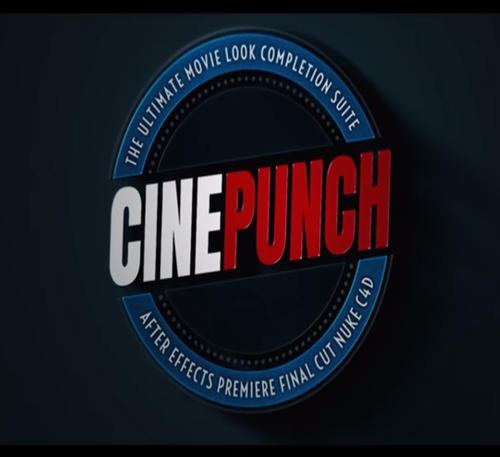 PHOTOGRAPHER - CINEPUNCH V13 Video Edit Software Service