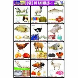 Uses Of Animals Chart