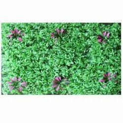 Mat M-3 Artificial Wall Grass