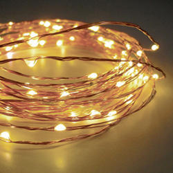 Zalaxie LED String Light