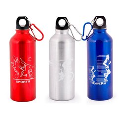 Stainless Steel Sports Carry Bottle