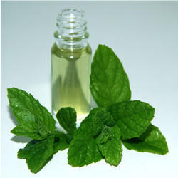 Mentha Oil Rectified