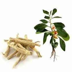 Organic Dried Ashwagandha Root