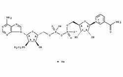 Beta- Nicotinamide Adenine Dinucleotide, Disodium Salt