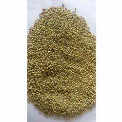 Single Parot Quality Coriander Seed