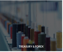 Forex services near me