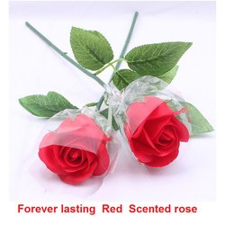 Red Scented Rose