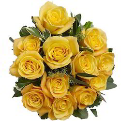 Rosy Elegance 12 Yellow Roses