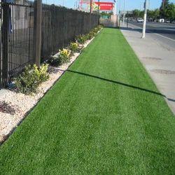 Sydney Grass Landscaping Grass