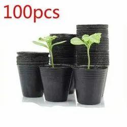 Plant Energizer