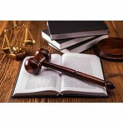 Criminal Law Attorney Service, 0-2 Years, Application Usage: Professional