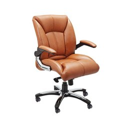 SF-138 Director Chair