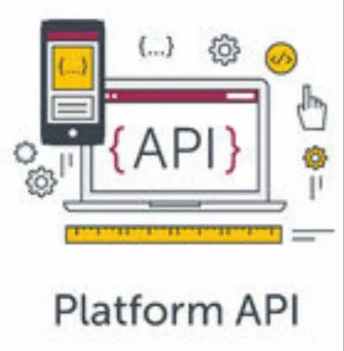Web Services/API Service in Rajouri Garden, New Delhi | ID: 20922469512