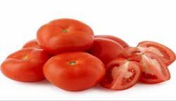Freshpunch Fresh Tomato