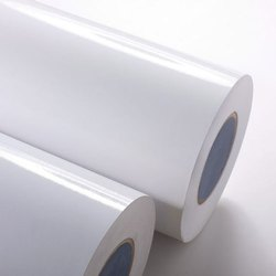 White PE Coated Paper, For Food Container, GSM: 150-350