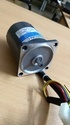 Pinion Shafted AC Gear Motors