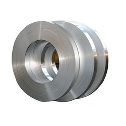 Stainless Steel 309 Strip