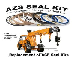 ACE Crane Seal Kits
