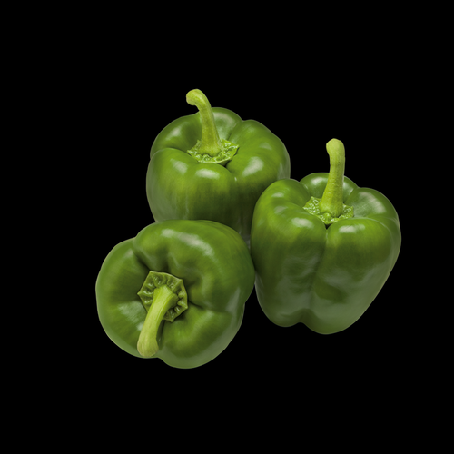 CALIFORNIA WONDER 40 seeds of each colour SWEET PEPPER Red and Yellow