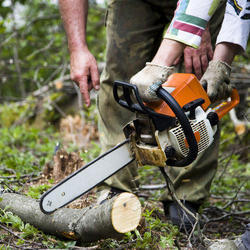 Chain Saw Machines, Power Consumption: 1300 Watt