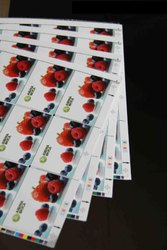 Offset Printable PVC Core