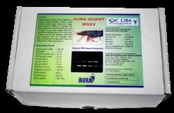 Aura Biotechnologies Pvt Ltd Box WSSV Nested PCR Based Detection Kit, for Disease diagnostic