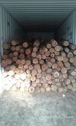 Benin Teak Logs