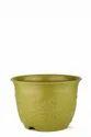 Leafy Pot-08