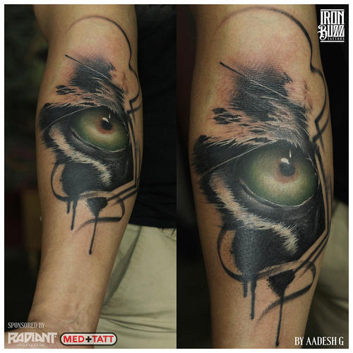 Tattoos For Parlour Rs 3000 Day Iron Buzz Tattoos: Tiger / Lion Tattoos At Rs 3000 /number