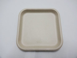 9 inch Square Plate