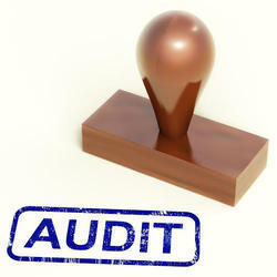 Company Regulatory Audit Compliance Service