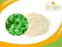 Stevia 80% Extract