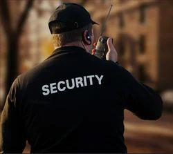 Regular Security Audit Service