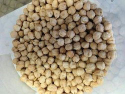 White Chickpeas 10 Mm
