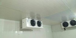 Rinac 23-25 Kw Cold Room