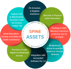 Spine Asset Management Software